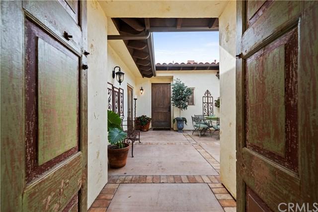 31311 Paseo Nogal, San Juan Capistrano, CA 92675 (#OC19036058) :: Doherty Real Estate Group