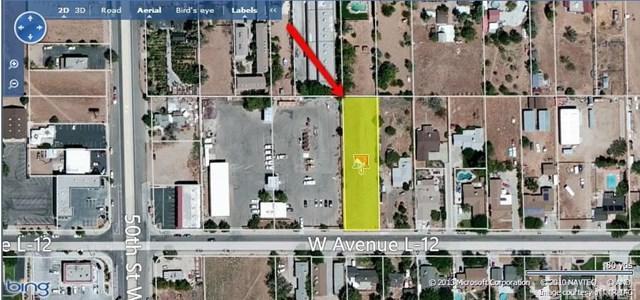 4827 W Ave L12, Lancaster, CA 93536 (#SR19036622) :: Go Gabby