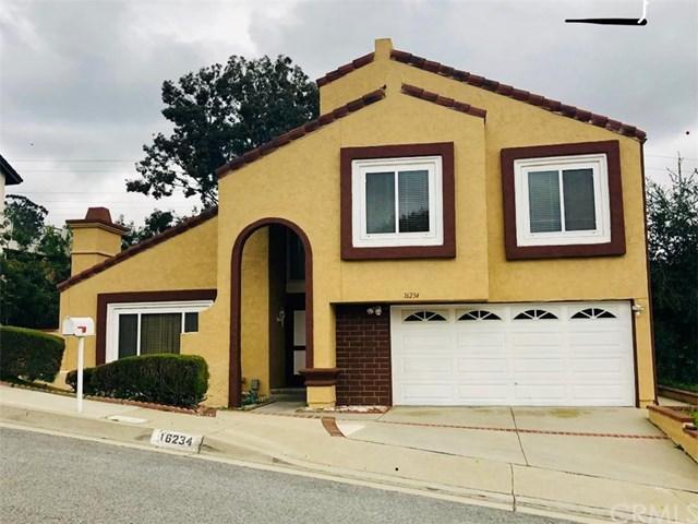 16234 Elza Drive, Hacienda Heights, CA 91745 (#TR19037438) :: RE/MAX Masters