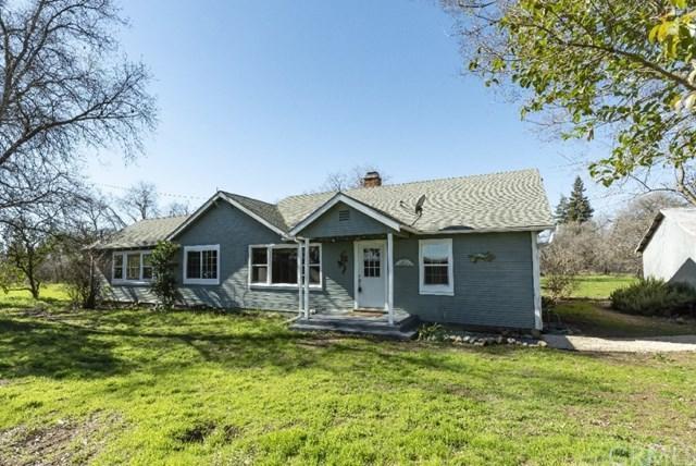 10033 Lott Road, Durham, CA 95938 (#SN19037224) :: The Laffins Real Estate Team