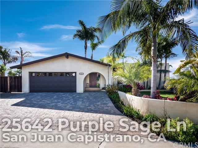 25642 Purple Sage Lane, San Juan Capistrano, CA 92675 (#OC19037221) :: Hart Coastal Group