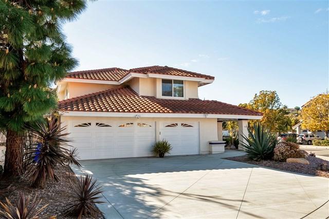 358 Via Andalusia, Encinitas, CA 92024 (#190009483) :: McLain Properties