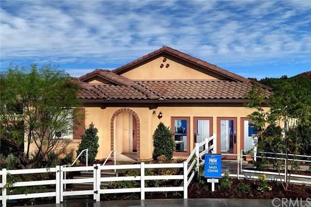 25079 Bridlewood Circle, Menifee, CA 92584 (#EV19039021) :: Kim Meeker Realty Group