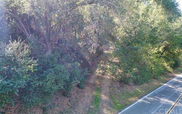 0 Avenida Del Oro, Temecula, CA  (#SW19040235) :: McLain Properties