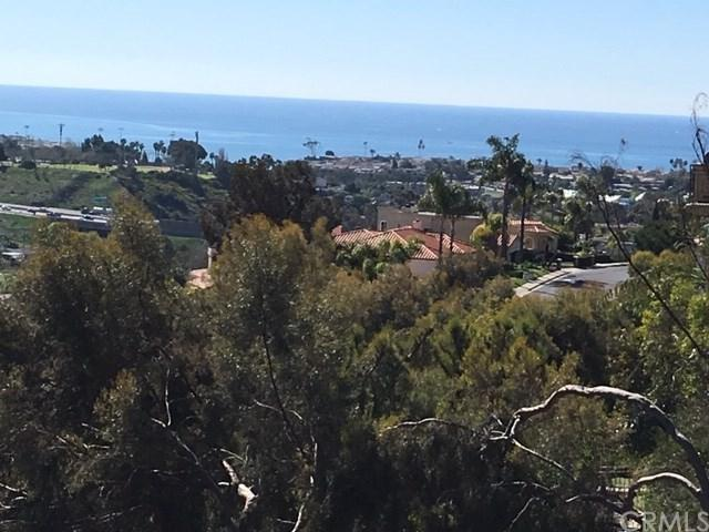 20 Marana, San Clemente, CA 92673 (#OC19039396) :: The Danae Aballi Team