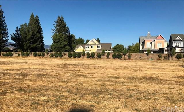 1930 S Main Street, Lakeport, CA 95453 (#LC19041112) :: RE/MAX Empire Properties