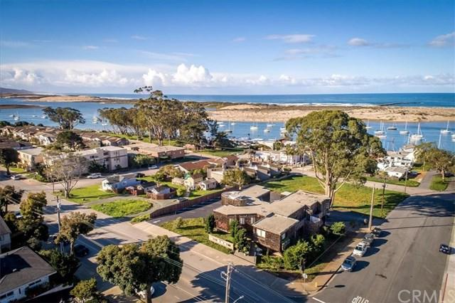 545 Main Street, Morro Bay, CA 93442 (#SC19043819) :: Team Tami