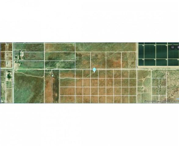 0 Vac/Cor Avenue C Drt /223Rd St, Fairmont, CA 93536 (#SR19044245) :: Kim Meeker Realty Group