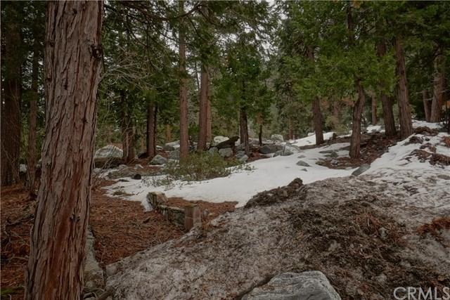 0 Spring Drive, Forest Falls, CA 92339 (#IV19046264) :: Millman Team