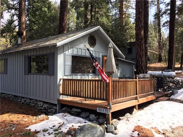 40335 Valley Of The Falls Drive, Forest Falls, CA 92339 (#EV19047707) :: Millman Team