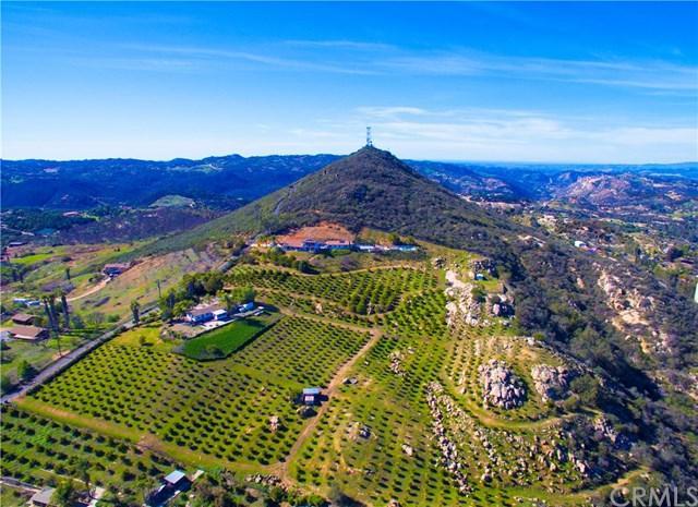 29555 Sierra Rojo Lane, Valley Center, CA 92082 (#SW19051467) :: Allison James Estates and Homes