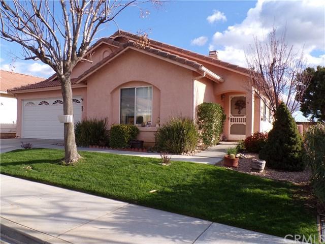 40803 Caballero Drive, Cherry Valley, CA 92223 (#EV19053112) :: Vogler Feigen Realty