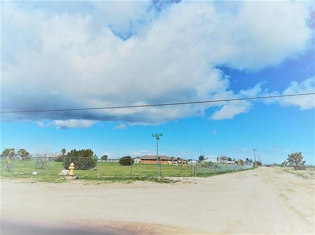 11272 Smoke Tree Road, Oak Hills, CA 92344 (#CV19054860) :: Go Gabby