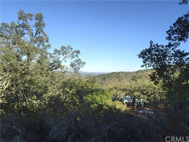 10945 Vista Road, Atascadero, CA 93422 (#SP19055007) :: RE/MAX Parkside Real Estate