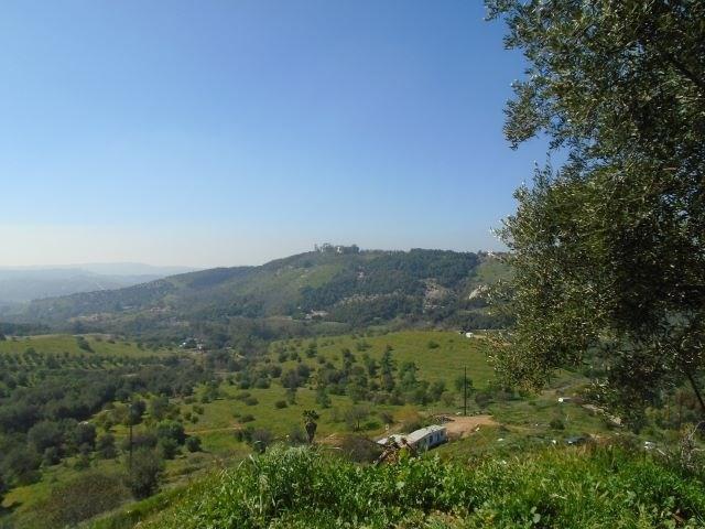 12519 Calle De Halcones, Valley Center, CA 92082 (#190013446) :: Jacobo Realty Group