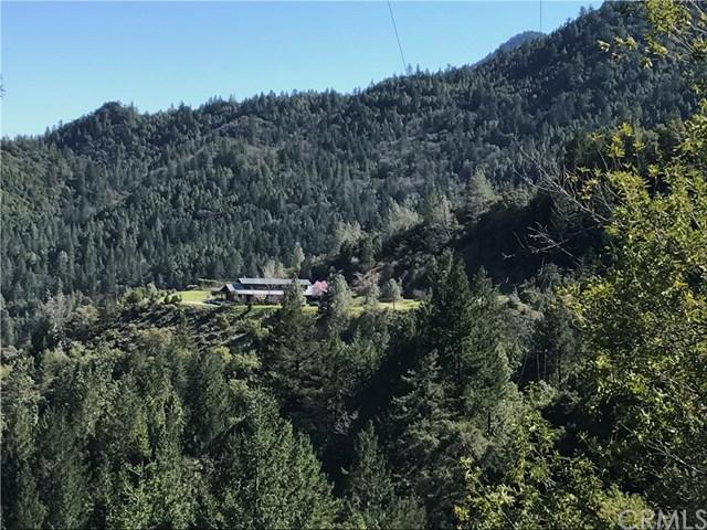 14507 Western Mine Road, Middletown, CA 95461 (#LC19055802) :: Fred Sed Group