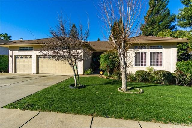 1240 Banning Park Drive, Chico, CA 95928 (#SN19056003) :: The Laffins Real Estate Team