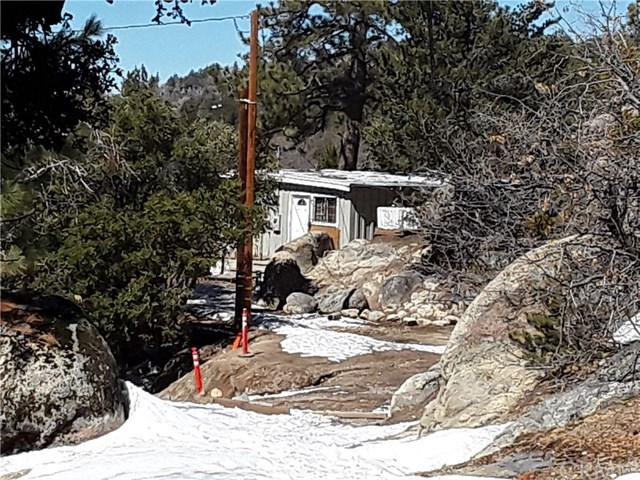 2442 Elko Drive, Running Springs Area, CA 92382 (#IV19058199) :: The Laffins Real Estate Team