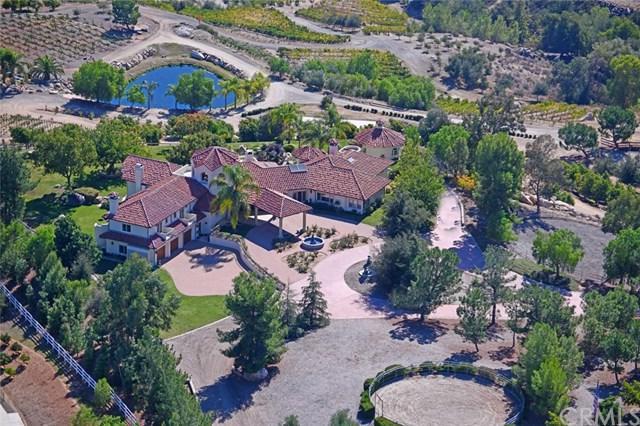 38280 Via Majorca, Murrieta, CA 92562 (#OC19058013) :: The Laffins Real Estate Team