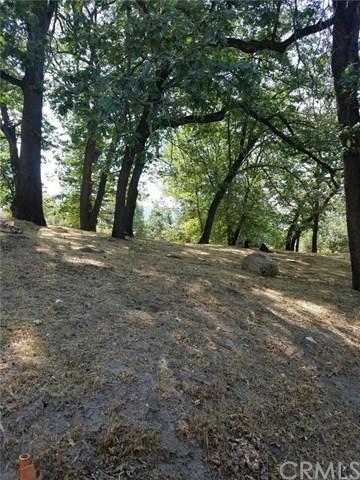 13 Mistletoe Turn, Running Springs Area, CA 92382 (#IV19058466) :: The Laffins Real Estate Team