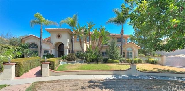 1484 N Pinebrook Avenue, Upland, CA 91786 (#CV19060653) :: Mainstreet Realtors®