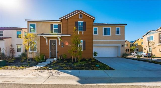 24117 Darmera Drive, Lake Elsinore, CA 92532 (#SW19059437) :: The Ashley Cooper Team