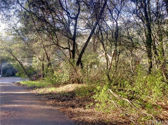 7166 E Butte Street, Nice, CA 95464 (#LC19061232) :: Kim Meeker Realty Group