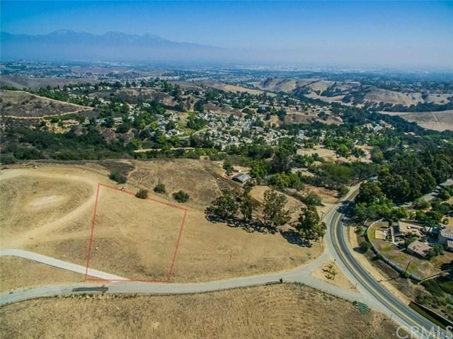 2056 Carbon Canyon Road, Chino Hills, CA 91709 (#CV19007843) :: RE/MAX Innovations -The Wilson Group