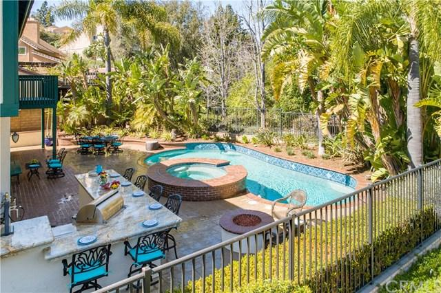 5899 E Trapper Trail, Anaheim Hills, CA 92807 (#PW19060276) :: Ardent Real Estate Group, Inc.