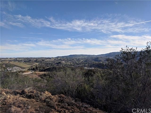 2 Aria Circle, Murrieta, CA 92562 (#SW19062008) :: The Laffins Real Estate Team