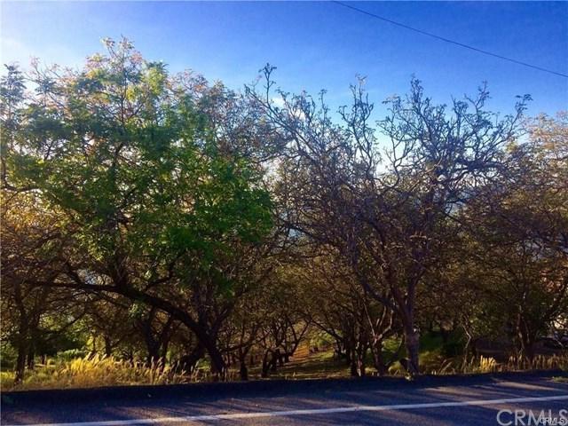3031 Westridge Drive, Kelseyville, CA 95451 (#LC19062462) :: Kim Meeker Realty Group
