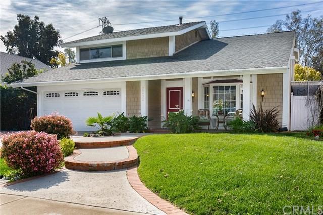 25922 Tree Top Road, Laguna Hills, CA 92653 (#OC19060462) :: Doherty Real Estate Group