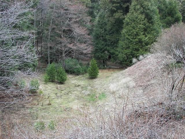 431 Alder Glen Road, Cedarpines Park, CA 92322 (#EV19063538) :: Millman Team