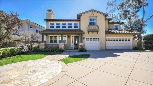1 Cobalt Drive, Dana Point, CA 92629 (#OC19059641) :: Scott J. Miller Team/ Coldwell Banker Residential Brokerage