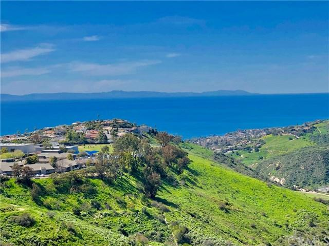 2590 Park Avenue, Laguna Beach, CA 92651 (#LG19059898) :: Scott J. Miller Team/ Coldwell Banker Residential Brokerage