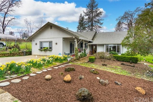3981 Skyview Drive, Paradise, CA 95969 (#SN19064650) :: The Laffins Real Estate Team