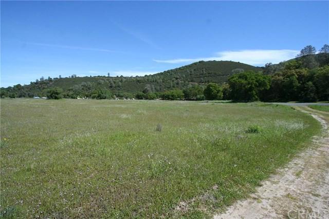5647 Vista Mt Estates Drive, Kelseyville, CA 95451 (#LC19064204) :: Team Tami