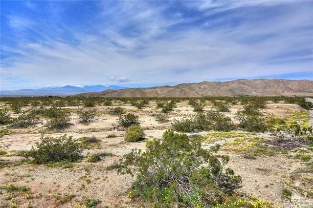 Terry Drive, Desert Hot Springs, CA 92241 (#219009191DA) :: Z Team OC Real Estate