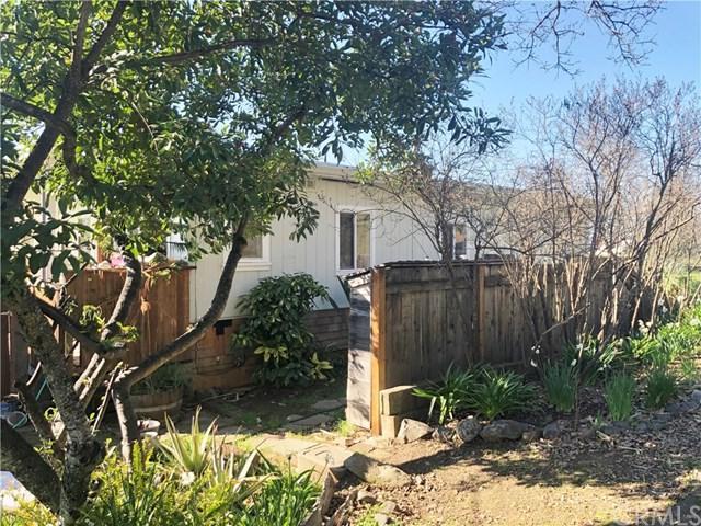 3231 Springe Street, Nice, CA 95464 (#LC19067925) :: Kim Meeker Realty Group