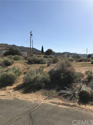 8848 Catalina Way - Photo 1