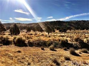 47011 Lakeview Drive, Big Bear, CA 92314 (#PW19069131) :: Keller Williams Temecula / Riverside / Norco