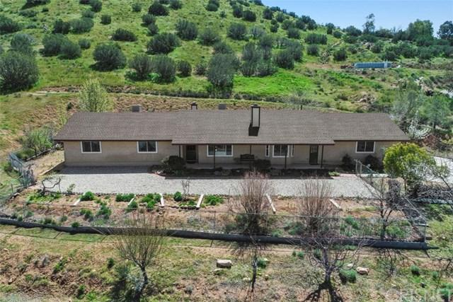 31620 Indian Oak Road, Acton, CA 93510 (#SR19069448) :: Fred Sed Group
