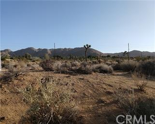 60400 Alta Mesa Drive, Joshua Tree, CA 92252 (#JT19072421) :: The Laffins Real Estate Team