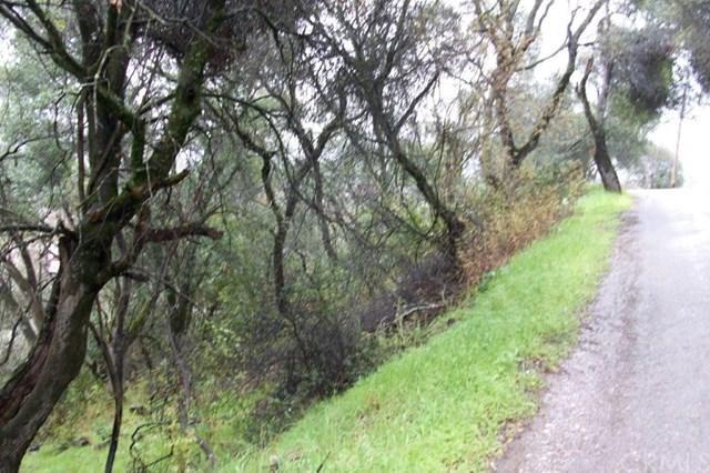 12537 Widgeon Way, Clearlake Oaks, CA 95423 (#LC19074457) :: Kim Meeker Realty Group
