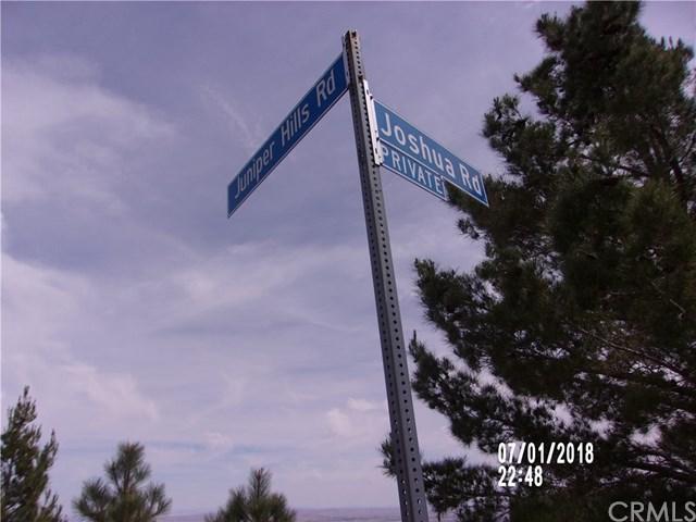 10731 Juniper Hills Rd. Road, Juniper Hills, CA 93553 (#DW19076443) :: Fred Sed Group