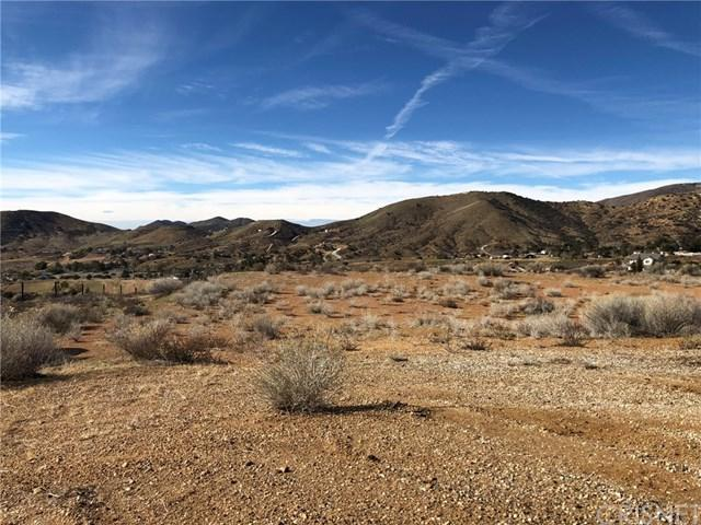 4108 Vac/Pelona Canyon Rd/Vic Eager Road, Acton, CA 93510 (#SR19076572) :: Fred Sed Group
