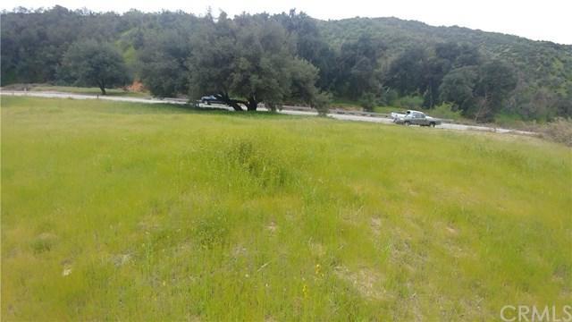 36992 Wildwood Canyon Road - Photo 1