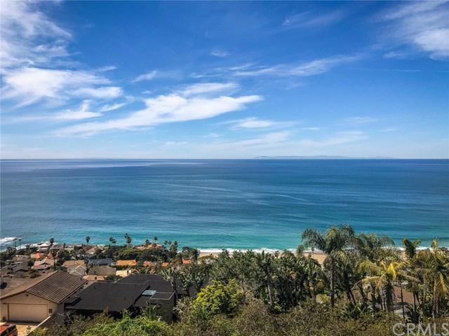 31164 Ceanothus Drive, Laguna Beach, CA 92651 (#OC19071481) :: Doherty Real Estate Group
