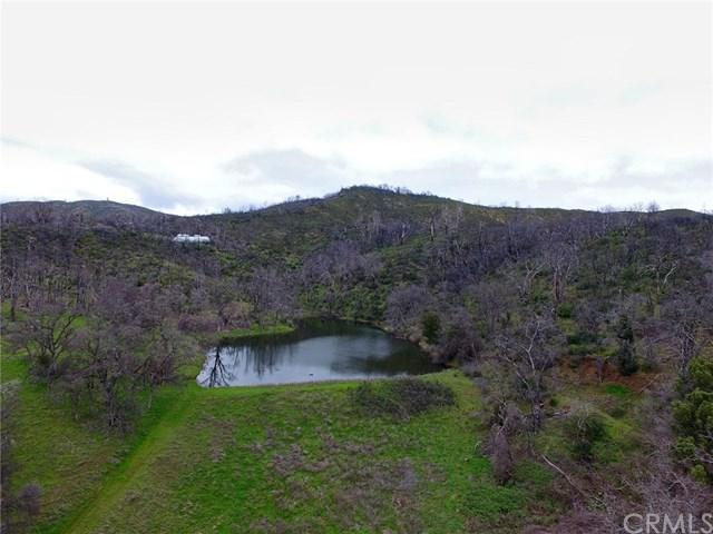 10180 Rocky Creek Road, Lower Lake, CA 95457 (#LC19081364) :: Fred Sed Group