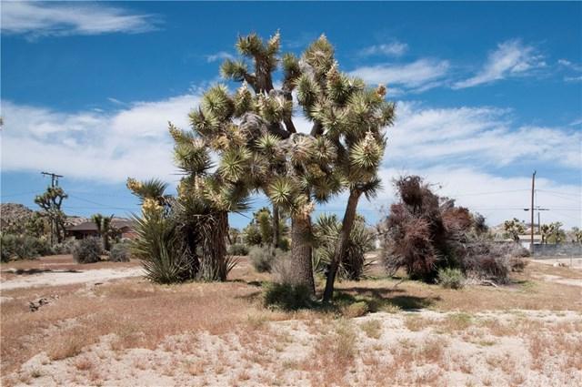 0 Warren Way, Yucca Valley, CA  (#JT19080824) :: RE/MAX Masters